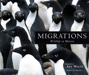 migrations-cover-low-res
